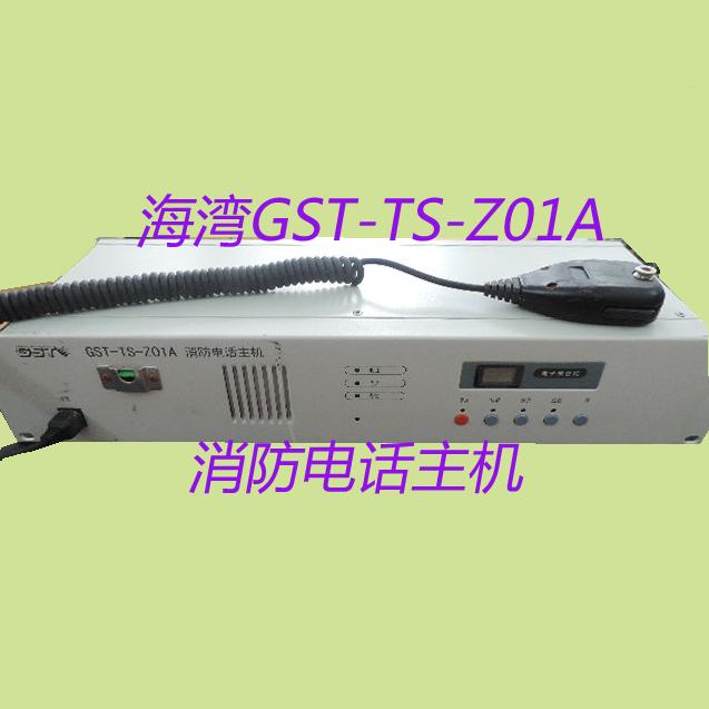 GST-TS-Z01A (1).png